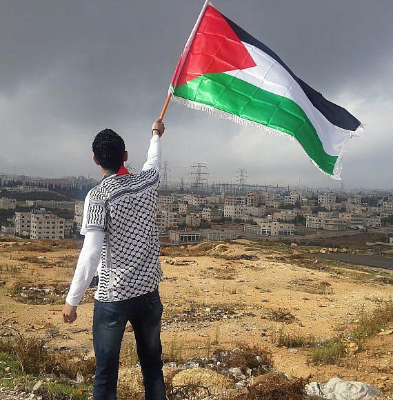 Photo by Ahmed Abu Hameeda